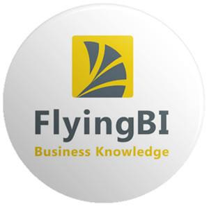 סיכות לכנס עבור FlyingBI